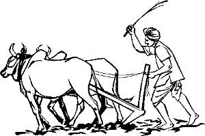 சமஸ்கிருத நூல்களில் விவசாயமும் தாவரவியலும்